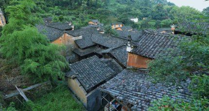 Как спасти деревню при помощи Минздрава и агротуризма – опыт Китая