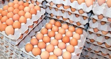 В отрасли сообщили о снижении отпускных цен на яйца