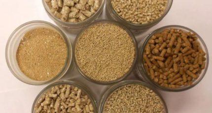 ГД во II чтении определяет порядок госрегистрации кормовых добавок и госпошлины за нее