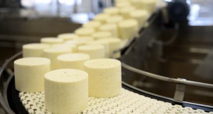 Государственное регулирование позволит обеспечить устойчивое развитие рынка «зеленой» продукции