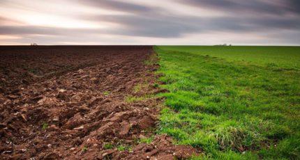 В России начали инвентаризацию земель