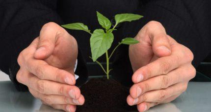 Созданы условия для упрощения механизма агрострахования для сельхозпроизводителей и повышения его доступности