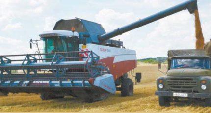 Бутурлиновский район: Аграрии  убирают ранние зерновые
