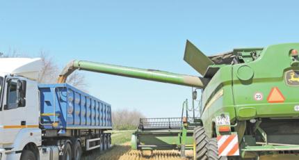 Кантемировский район: Растениеводы завершили уборку яровой пшеницы
