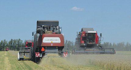 Новоусманский район: Аграрии начали уборочную кампанию