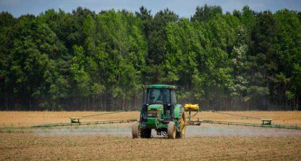 Малый агробизнес, что поможет выжить