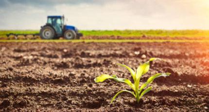 Реестр земель сельхозназначения позволит быстрее оценить их пригодность для АПК – Мишустин