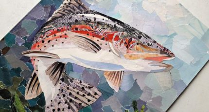 В России создан Центр экономических исследований рыбного хозяйства