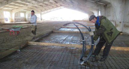 Нижнедевицкий район: В Синих Липягах реконструируют животноводческий корпус