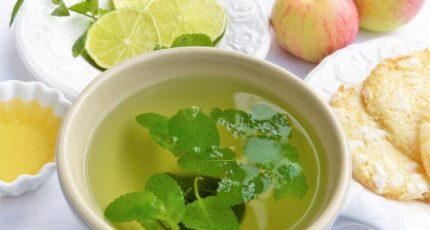 Как вырастить мяту на подоконнике для заварки чая с фруктовым ароматом