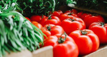 Около 123 тысяч тонн овощей собрано в теплицах Липецкой области