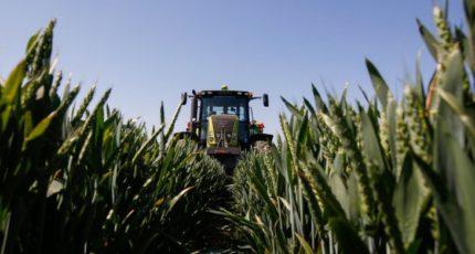 Питание сельхозкультур в новых условиях