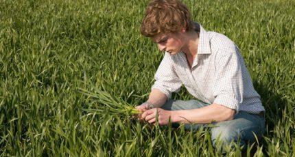 Информация для сельхозпроизводителей