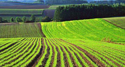 Подписан закон, устанавливающий основания для развития сельского туризма